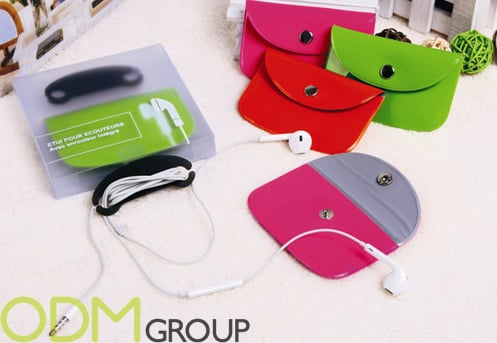 Branded Accessories: headphone case
