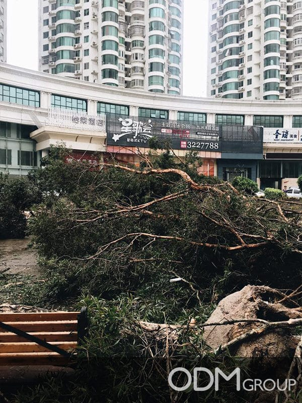 Super Typhoon Hato hits Zhuhai, HK and Macau