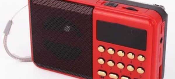 Custom Portable Speakers
